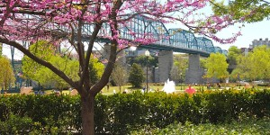 Springtime in Chattanooga, TN! The beautiful Tennessee River...