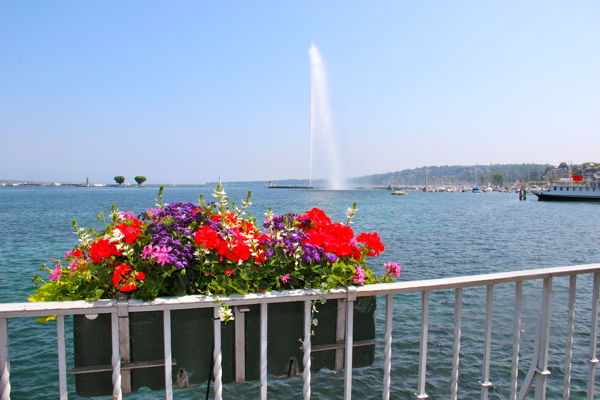 Bright, cheery flowers on Geneva's Lake set the stage perfectly for the Jet d'Eau.