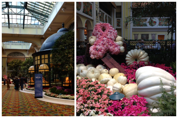 The lobby of the Beau Rivage reminded me of the Bellagio Hotel (in the same MGM family). Loved the white pumpkins and the pink floral Breast Cancer Awareness ribbon!