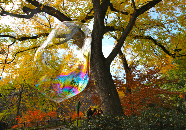 Fall has come to Central Park in NYC! And it's even better with giant bubbles from the Bubble Man, my favorite park entertainer. #fallfoliage