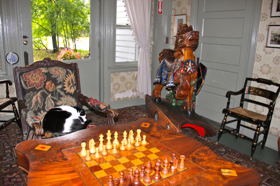 Simon, the feline Lobby Ambassador to the Red Lion Inn, takes a rest while contemplating his next chess move.